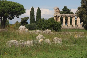 Athene Tempel in Paestum