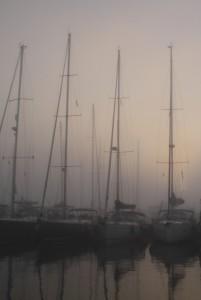 Nebel im Hafen Porto di Roma