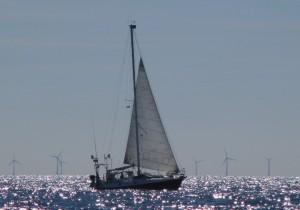Segeln vor einem Windpark