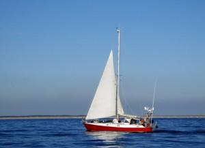 THO kokkino vor der niederländischen Küste